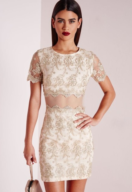 Missguided Premium embroidered lace mini dress - vestido de fiesta corto