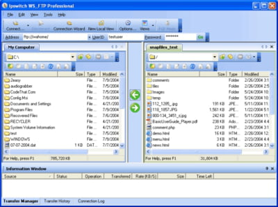 cliente ftp profesional WS_FTP Profesional